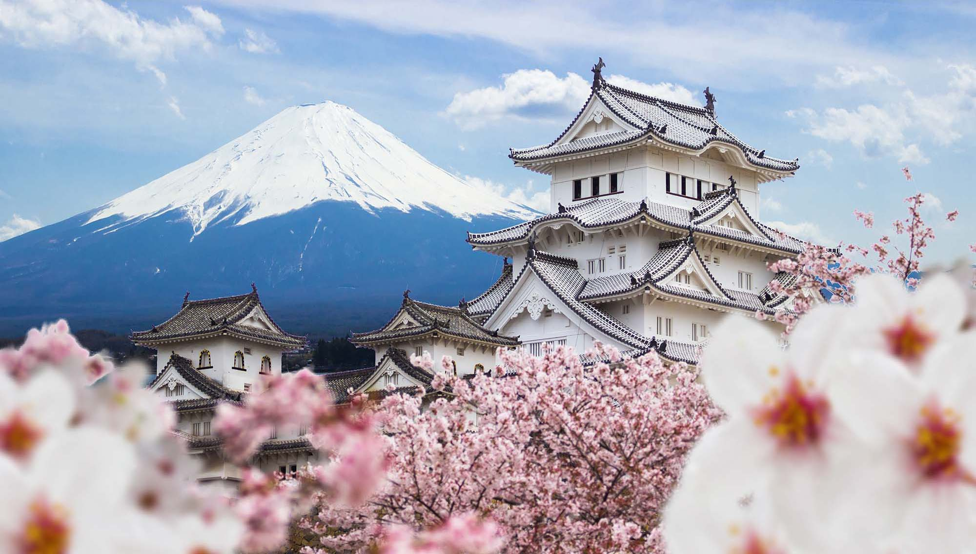 car hire rentals japan white temple and mountain