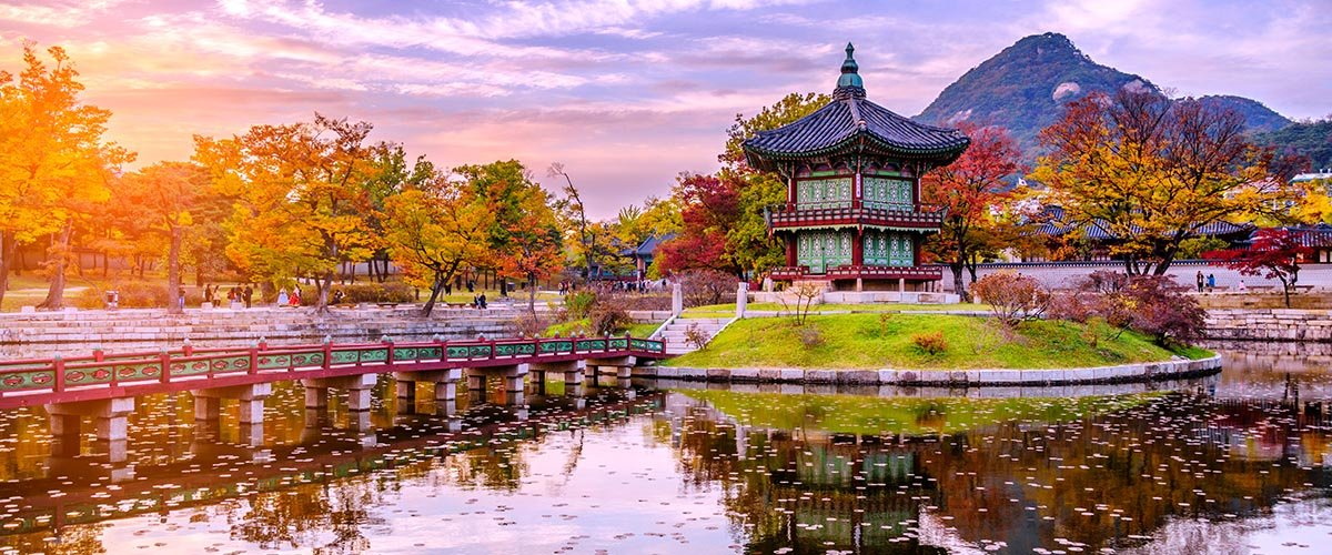 car hire rentals South Korea garden temple