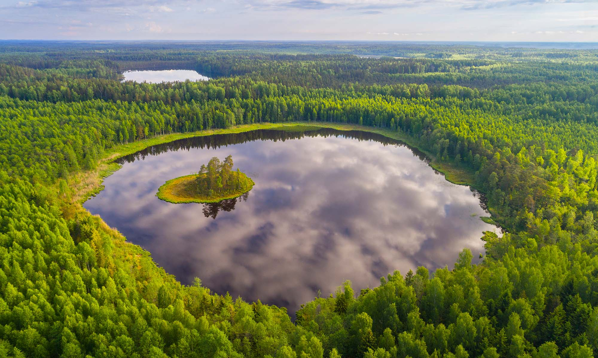car hire rentals belarus lake in forest